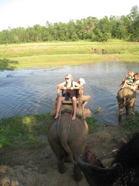 elephantride