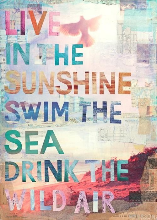 SunshineSwimLoveDrink