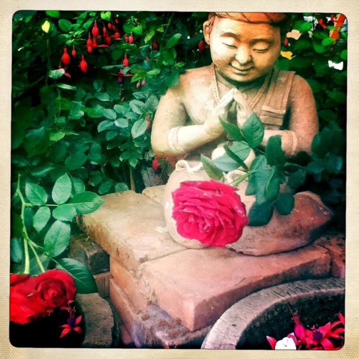Buddha statue with rose Thailand hipstamatic
