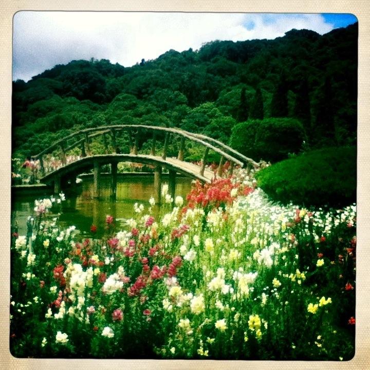 Bridge in gardens of Royal Pagodas Chiang Mai