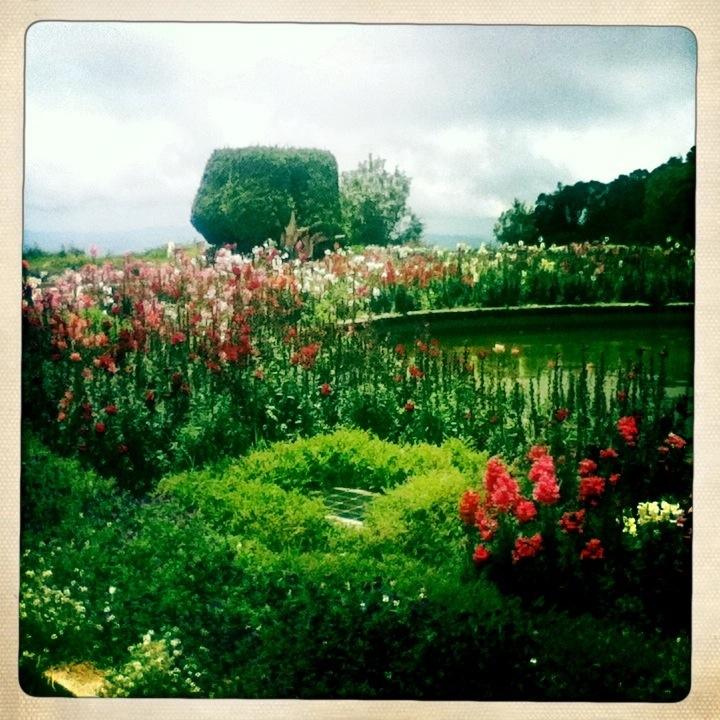 Beautiful gardens in Royal Pagodas Chiang Mai