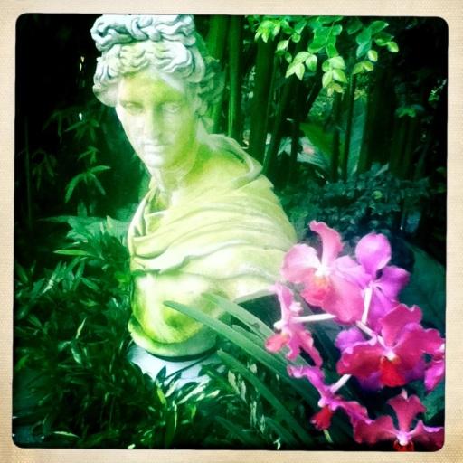OrchidGardenSingapore
