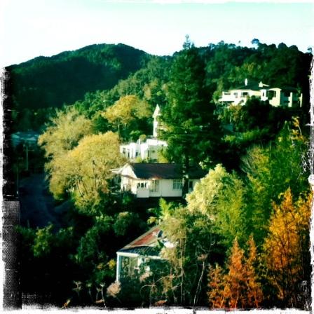 views from YHA Whangarei New Zealand